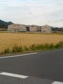 鴨川中学校600m